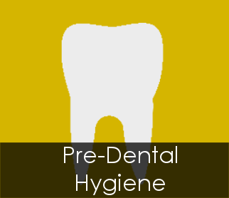 Learn more about Dental Hygiene!